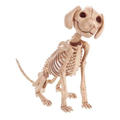 Esqueleto de Perro